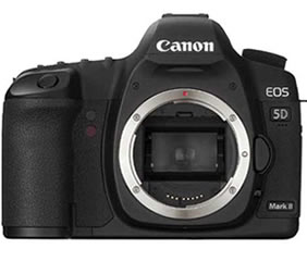 Canon EOS Digital Body Only